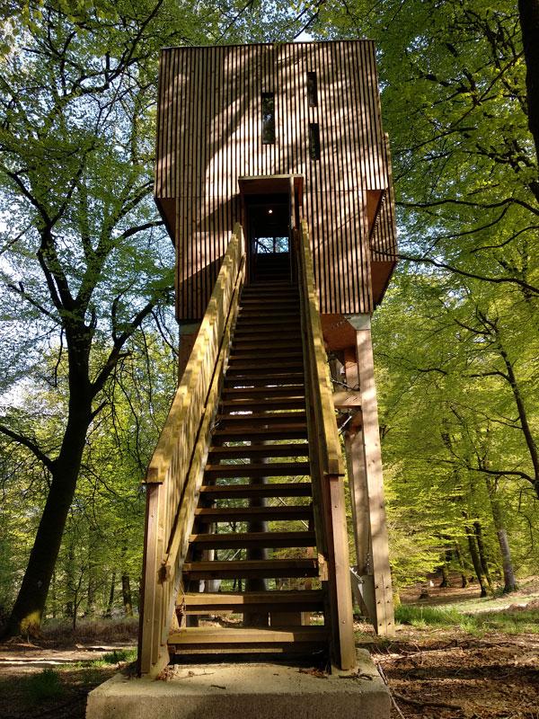 L'étape en forêt : mention spéciale pour les lodges dans les arbres !