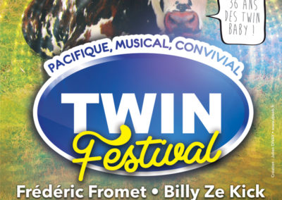 Affiche Twin Festival