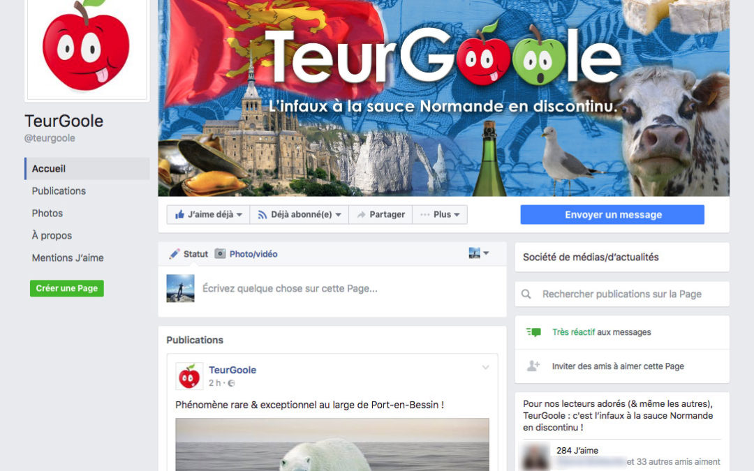 """Communauté Facebook """"TeurGoole"""""""